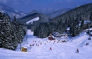 Украинские горы Карпаты