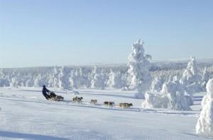 Чем примечателен зимний отдых в Финляндии?